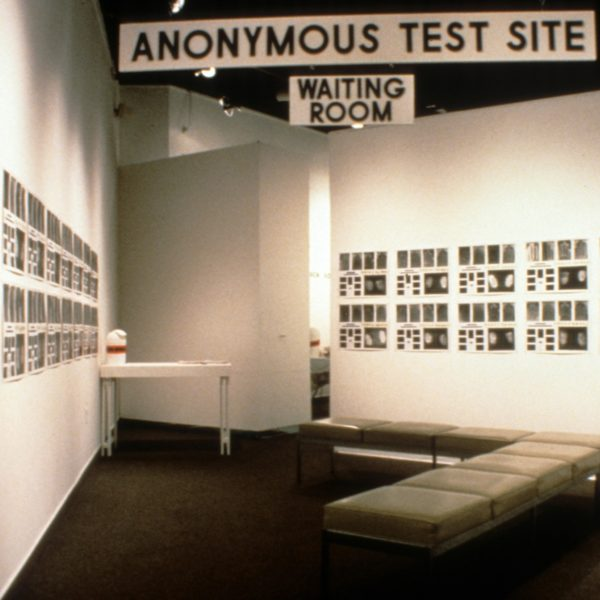 Anonymous Test Site (installation view)